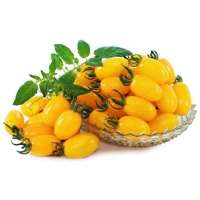Cà Chua trái cây A Lan